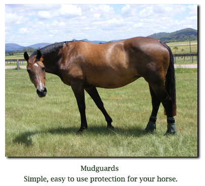 Mud guards for horses - treat greasy heel on horses